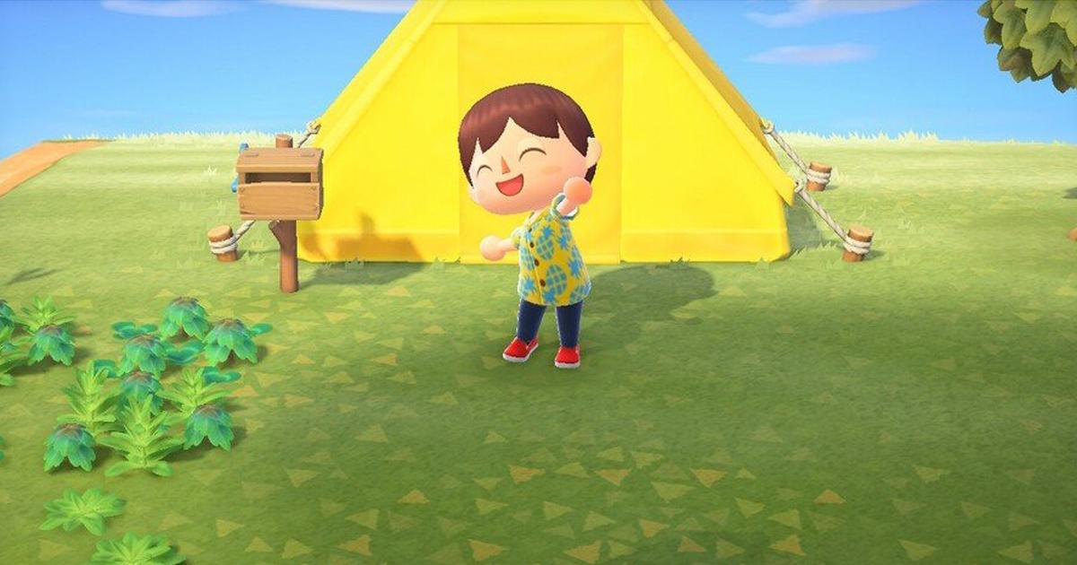 Zockerpuls - Animal Crossing Guide- Tipps für euren Einstieg in New Horizons - Zelt